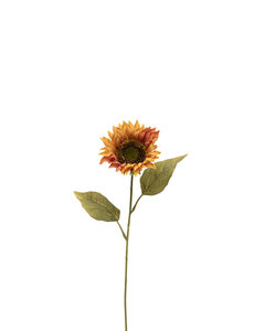 MERAVIC SUNFLOWER ORANGE 23""