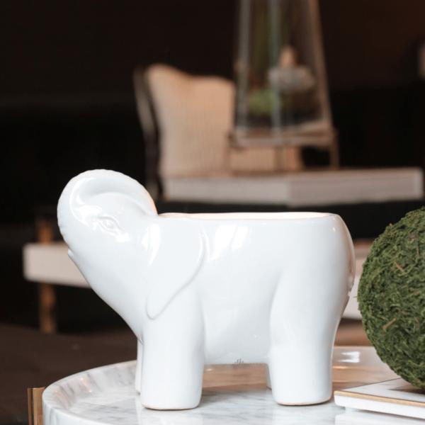 THOMPSON FERRIER THOMPSON FERRIER ELEPHANT COLLECTION WHITE - SPARKLING GRAPEFRUIT