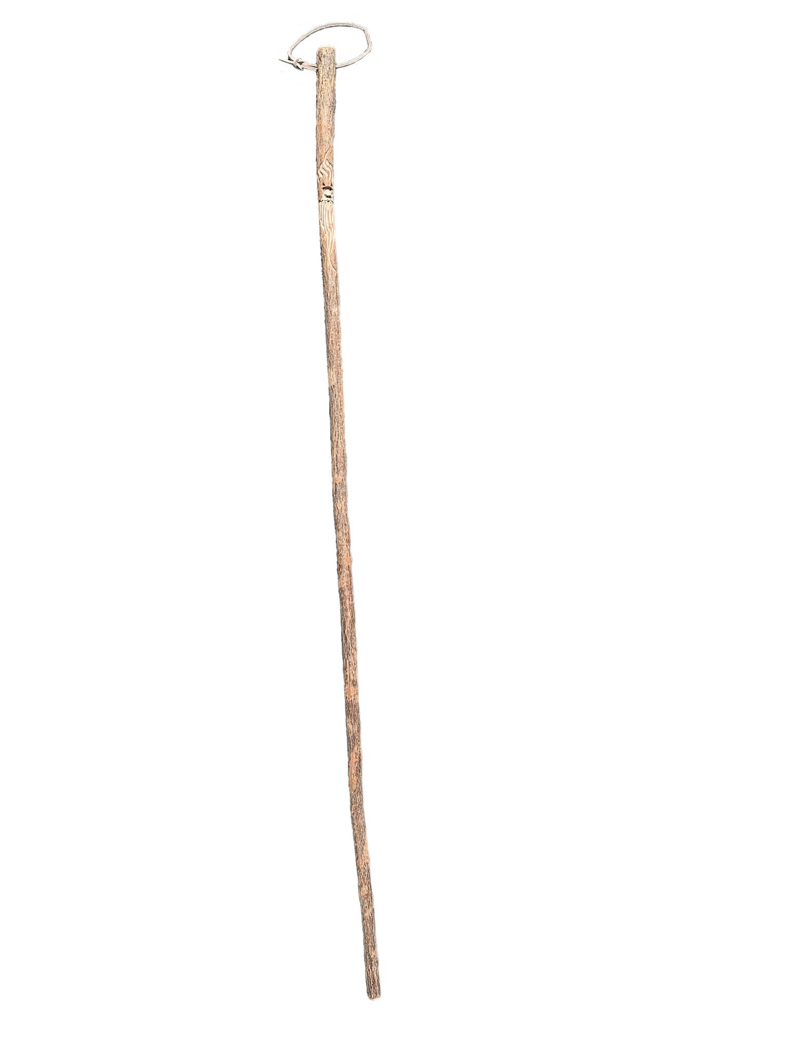 Carved Walking Stick-4
