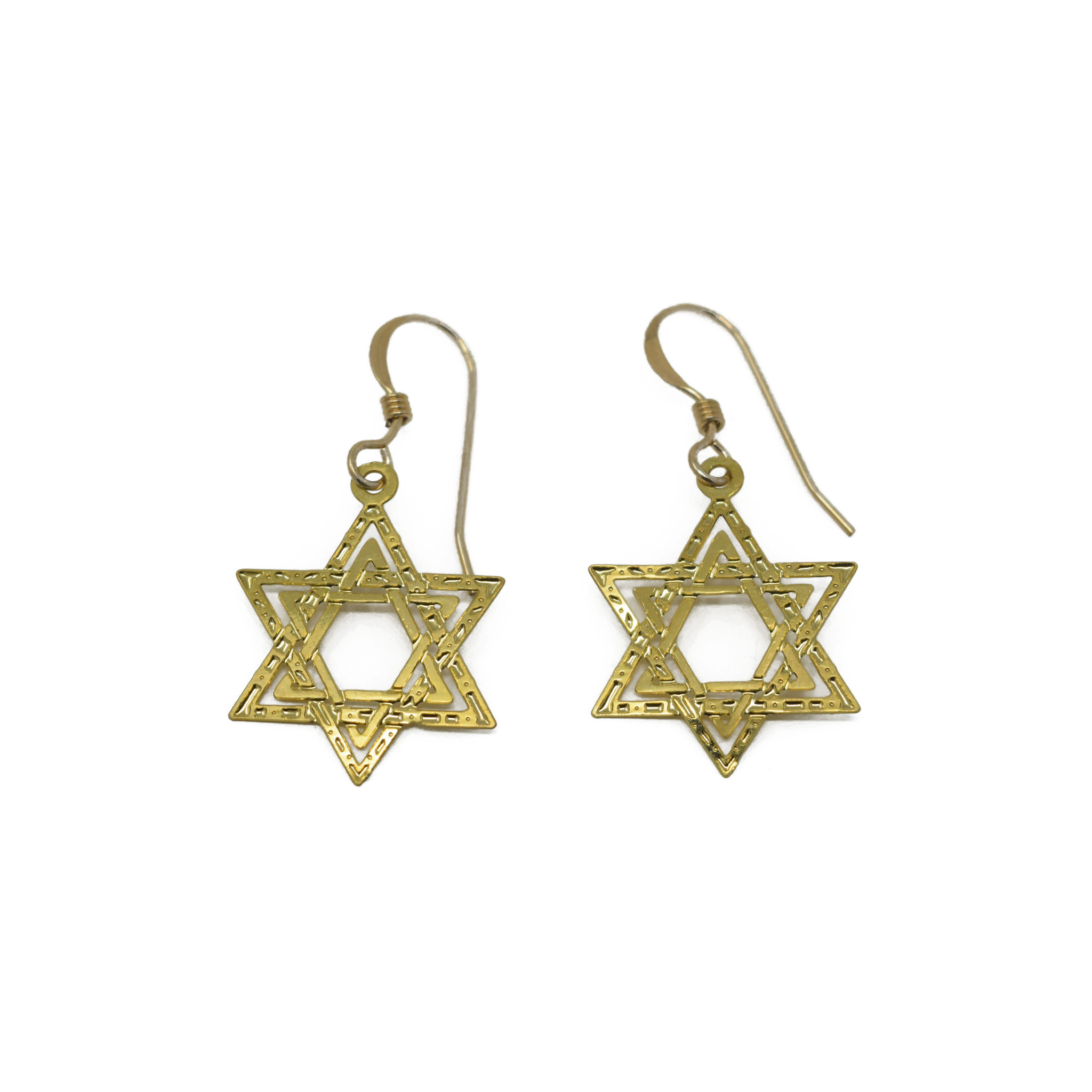 Star of David Earring-1