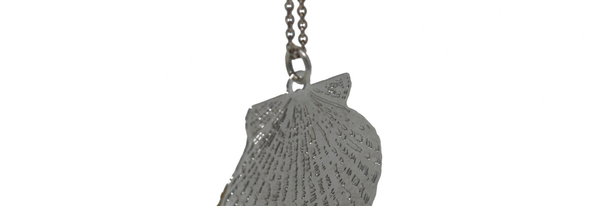 Scalloped Shell Necklace