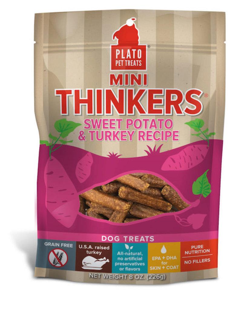 Plato Mini Thinkers