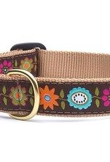 Up Country Up Country Collar Bella Floral