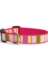 Up Country Up Country Collar Donna Stripe