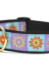 Up Country Up Country Collar Lola