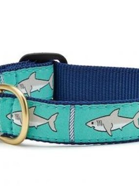 Up Country Up Country Collar Shark