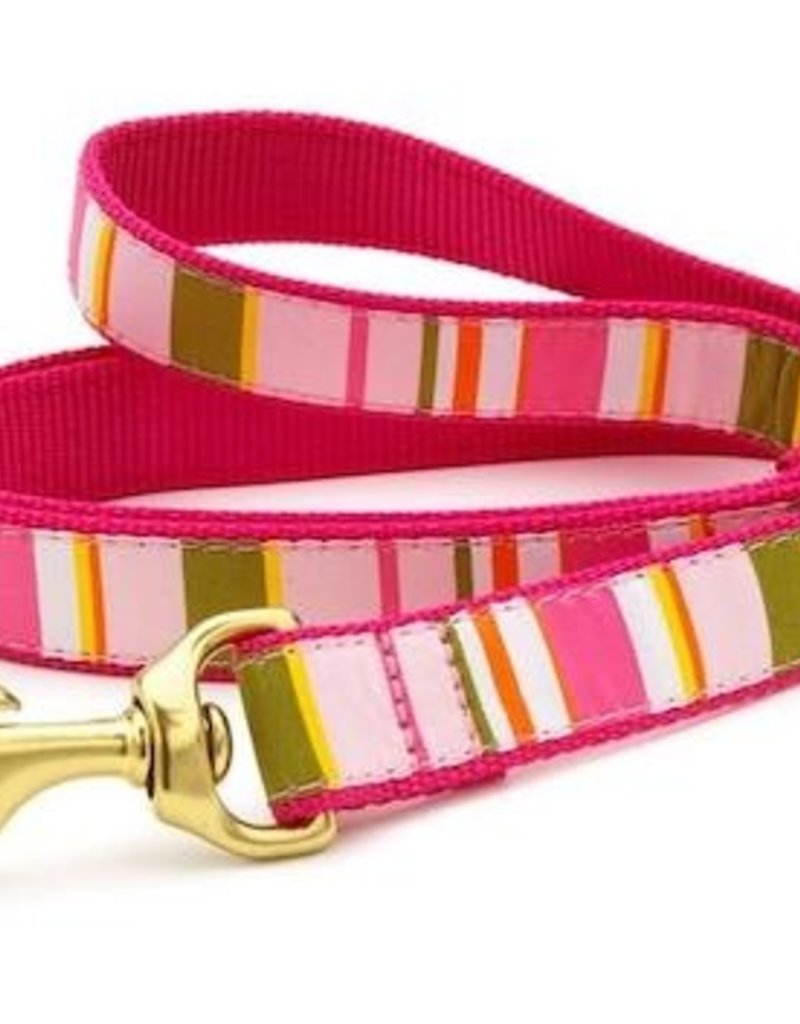 Up Country Up Country Leash Donna Stripe