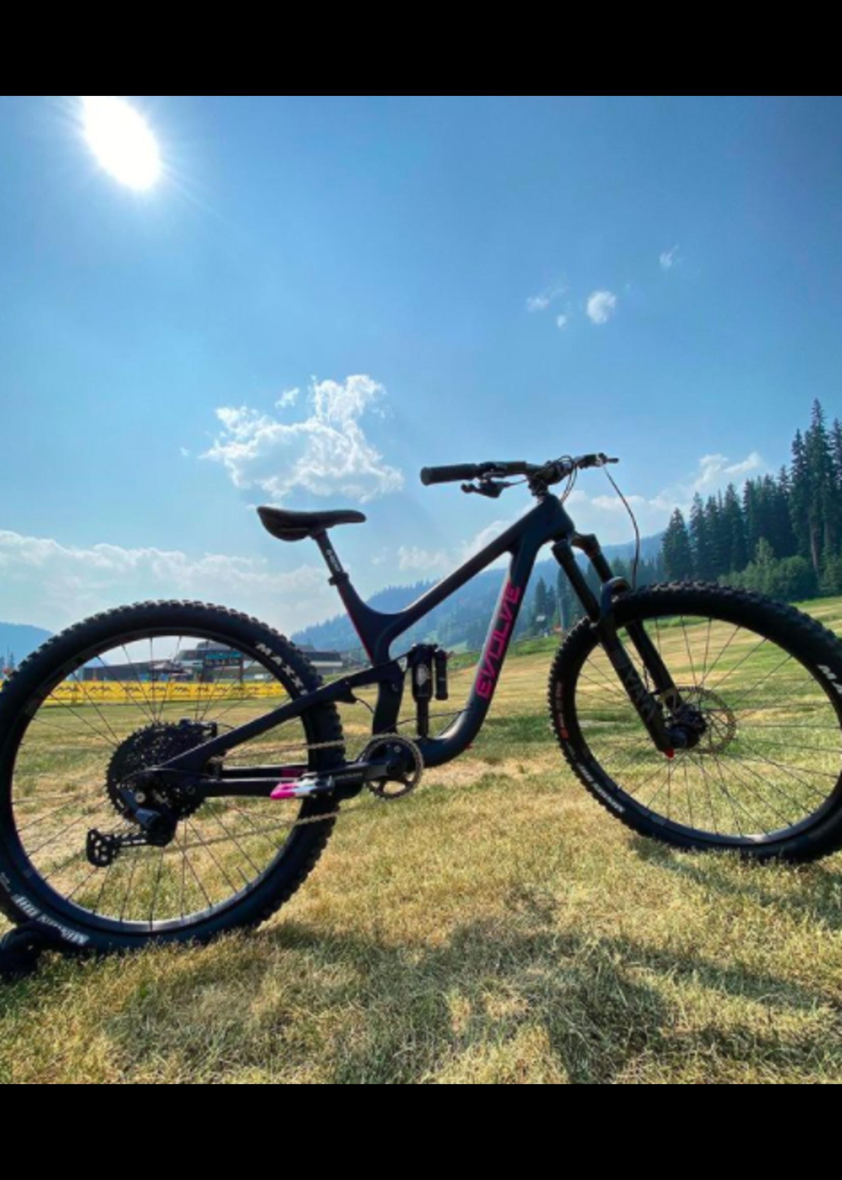 Evolve Downhill Bike Evolve Alpha