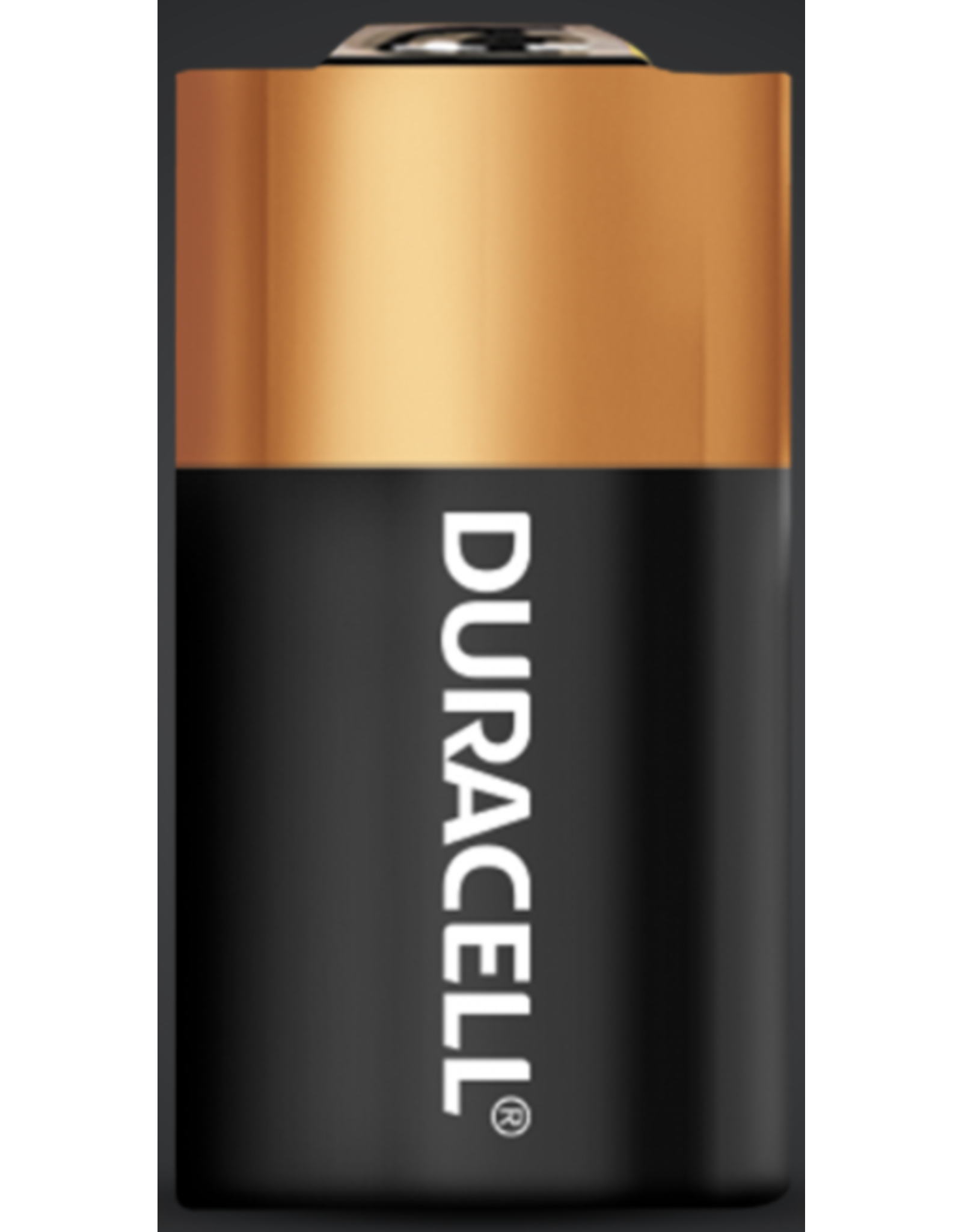 Duracell Duracell 28L 6v Lithium Battery
