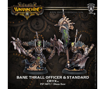 Cryx Bane Thrall Officer & Standard