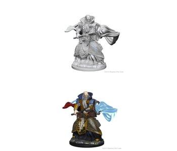 D&D Unpainted Minis Wv1 Human Male Wizard