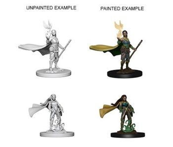D&D Unpainted Minis Wv4 Elf Female Druid
