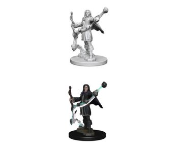 Pathfinder Unpainted Minis Wv1 Elf Male Sorcerer