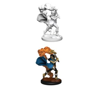 Pathfinder Unpainted Minis Wv1 Human Female Cleric