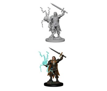 Pathfinder Unpainted Minis Wv1 Human Male Cleric