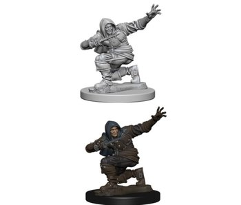Pathfinder Unpainted Minis Wv1 Human Male Rogue