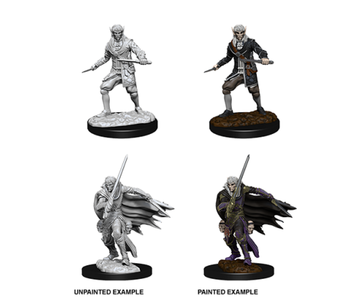 Pathfinder Unpainted Minis Wv10 Male Elf Rogue