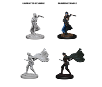 Pathfinder Unpainted Minis Wv4 Elf Female Rogue