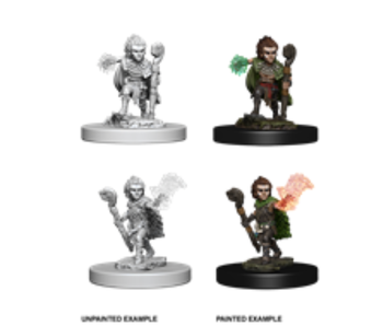 Pathfinder Unpainted Minis Wv5 Gnome Male Druid