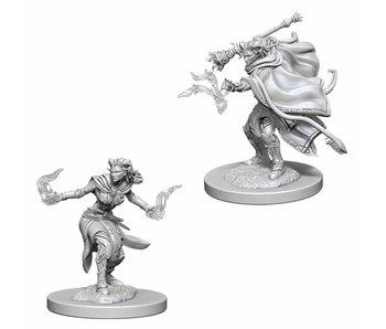 D&D Unpainted Minis Wv6 Female Tiefling Warlock