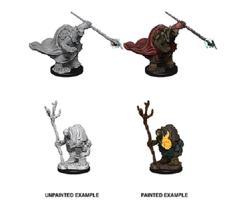 D&D Unpainted Minis Wv9 Tortles Adventures