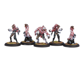 Legion of Everblight - Incubi (PIP 73031)