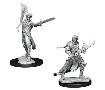 Pathfinder Unpainted Minis Wv11 Male Elf Magus