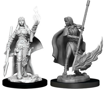 Pathfinder Unpainted Minis Wv11 Female Human Oracle