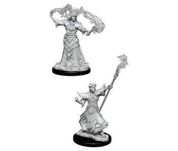 Pathfinder Unpainted Minis Wv11 Male Human Sorcrer
