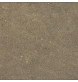 AK Interactive AK Interactive Splatter Effects Dirt - 100ml (Acrylic)