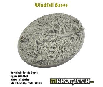 Windfall oval 120*92mm (1)