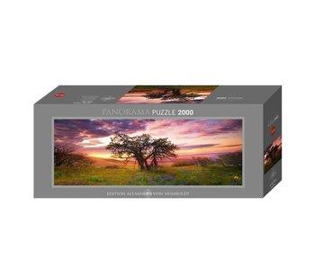 Heye Puzzle 2000pcs. Oak Tree Edition AVH