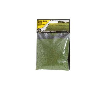 Woodland Scenics Static Grass Medium Green 4mm (FS618)