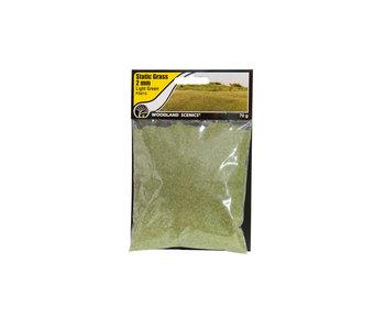 Woodland Scenics Static Grass Light Green 2mm (FS615)