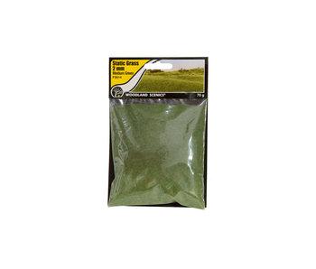 Woodland Scenics Static Grass Medium Green 2mm (FS614)