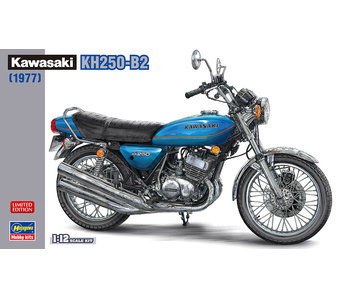 Kawasaki Kh250-B2 (1/12)