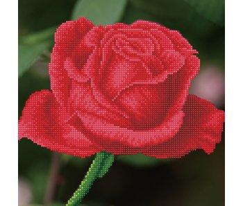Diamond Dotz Rose Bud