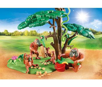 Orangutans with Tree (70345)