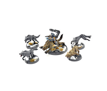 SPACE WOLVES 4 Fenrisian Wolves + Wolf Lord PRO PAINTED 40k