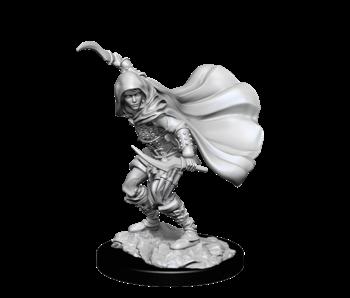 Pathfinder Unpainted Minis Wv14 Human Rogue Female