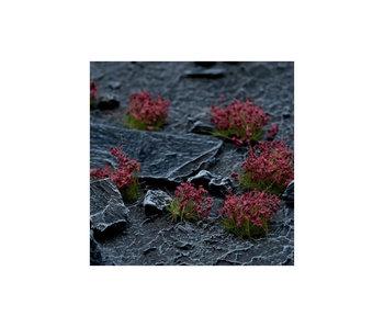 Dark Purple Flowers - Wild