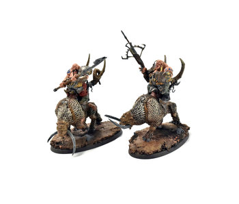 OGOR MAWTRIBES Mournfang Pack #2 PRO PAINTED Warhammer Sigmar