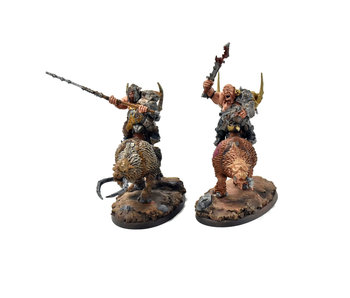 OGOR MAWTRIBES Mournfang Pack #1 PRO PAINTED Warhammer Sigmar
