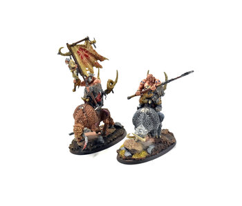 OGOR MAWTRIBES Mournfang Pack #5 PRO PAINTED Warhammer Sigmar