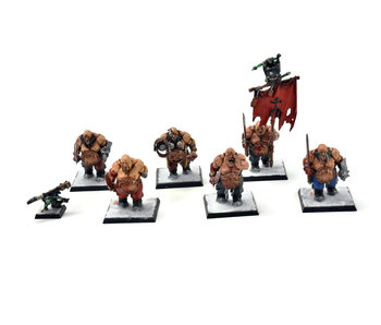 OGRE KINGDOMS Ogres Ogors #1 WELL PAINTED Warhammer Fantasy
