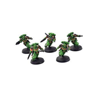 SPACE MARINES 5 Assault Intercessors #1 PRO PAINTED 40k salamanders