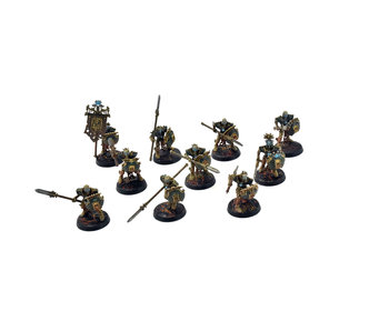 OSSIARCH BONEREAPERS 10 Mortek Guard #3 WELL PAINTED Warhammer Sigmar