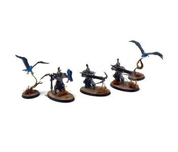 STORMCAST ETERNALS Vanguard Raptors #1 Warhammer Sigmar