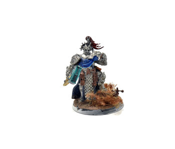 STORMCAST ETERNALS Lord Ordinator #1 Warhammer Sigmar