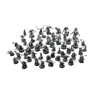 HORDES Circle Orboros Army PRO PAINTED Privateer Press